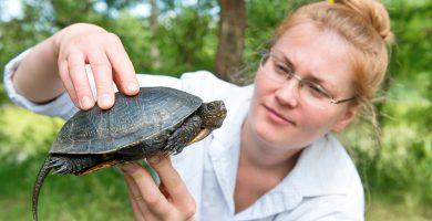 mujer con tortuga