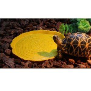comedero para tortugas
