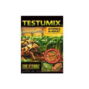 comida semillas para tortugas