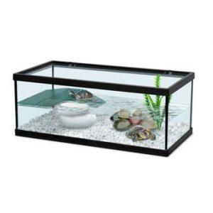 acuario tortuguera barata para tortugas